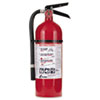 Kidde Pro 210 Fire Extinguisher, 4lb, 2-A, 10-BC (KID21005779)